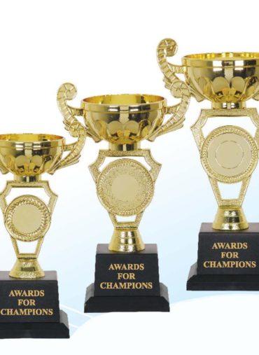 金屬獎盃 metallic trophies